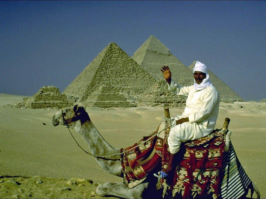 Отношение в Египте к урегулированию палестинской проблемы