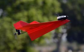 Мечта детства: радиоуправляемый бамужный самолетик