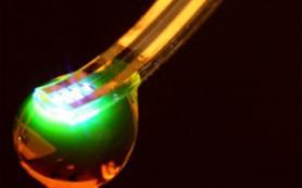 Разработан имплантат, позволяющий дистанционно контролировать активность нейронов