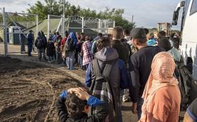 В Хорватию прибыли уже более 82 тысяч беженцев