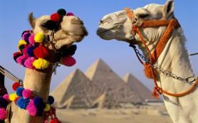 В Каире прошла российско-египетская встреча по вопросам безопасности