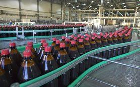 Госдума запретила продавать алкоголь в больших пластиковых бутылках