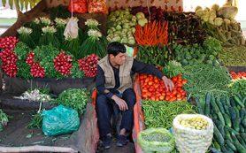 Афганистан решил заменить для России турецкие фрукты и овощи