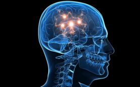 Мозг человека осознает окружающий мир благодаря решению математических задач