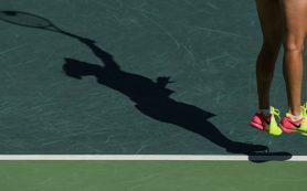 Теннисный St. Petersburg Open: Петербург увидит Вавринку, Раонича и Южного