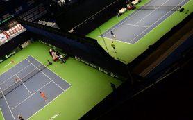 В Москве обладатели соцкарт бесплатно посетят Кубок Кремля по теннису