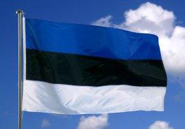 Новый президент Эстонии пообещала общаться на русском