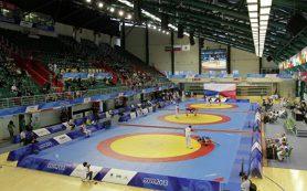 «Золотой» турнир: россияне более чем успешно выступили на ЧМ по самбо
