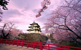 Япония упростит выдачу виз для россиян