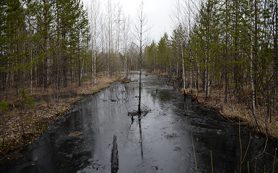 Минприроды предложило обязать нефтяников заранее готовиться к авариям на суше