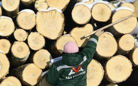 Импортозамещение в промышленности обошлось России в 250 миллиардов рублей