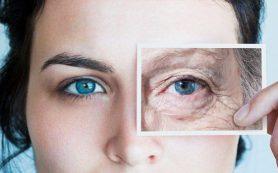 Специалисты разработали химическое вещество, позволяющее обратить старение вспять