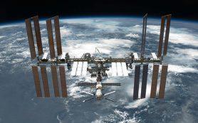 Внеземная жизнь на обшивке МКС