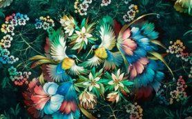 Выставка «Цветы и птицы» стартует в Дарвиновском музее