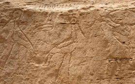 В Египте найдены самые древние «монументальные» иероглифы