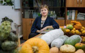 Ботаники ТГУ разработали технологию выращивания восковой тыквы в Сибири