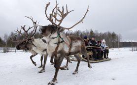 Где недалеко от Москвы можно провести зимние каникулы