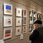 В Индии открывается выставка, посвященная дипломатическим отношениям с Россией