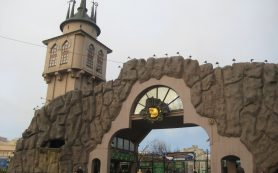 В Московском зоопарке готовятся к премьере новой версии «Щелкунчика»