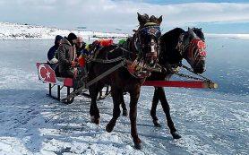 На поверхности озера Чилдыр запустили конные туры