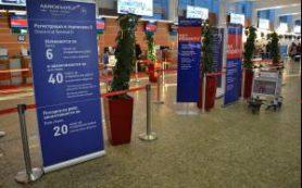«Аэрофлот» объявил маленькие чемоданы вне закона