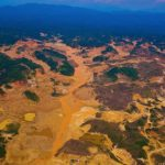Золотоискатели разоряют перуанские леса