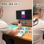Физическая активность делает работу мозга более эффективной