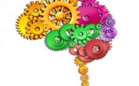 Российские химики расшифруют процесс мышления