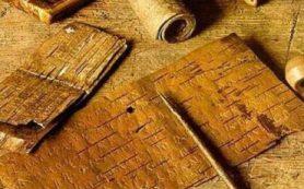 На раскопках в Великом Новгороде нашли первые в этом сезоне берестяные грамоты