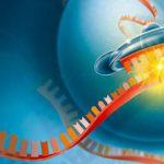 Одобрено первое лекарство, подавляющее мутировавшие гены