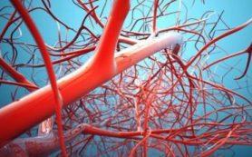 Антиоксидант снижает риск повторного инфаркта и инсульта