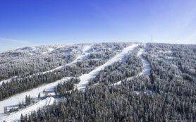В Нижнем Тагиле пройдет реконструкция горнолыжного курорта «Гора Белая»
