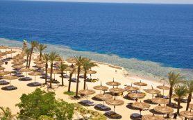 Туристы из регионов смогут улететь в Египет через Турцию