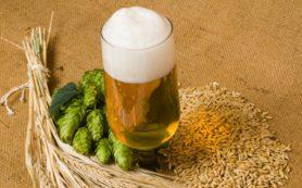 Историческая информация о происхождении пива в мире
