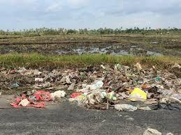 В Республике Индонезия в силу вступил официальный запрет на пластик