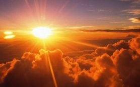 Как восстанавливаются клетки после разрушения ДНК солнцем