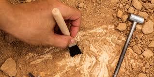 15 августа археологи отмечают профессиональный праздник