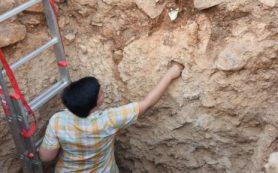 Древние люди добрались до греческого острова уже около 200 000 лет назад