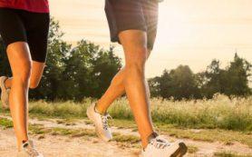 Время приема пищи и выполнения физических упражнений влияет на уровень сахара в крови