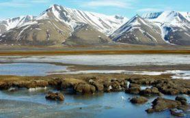 Новая аэрозольная станция в Арктике