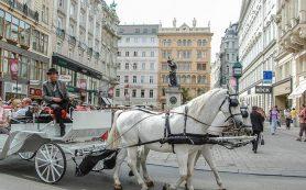 Как, ничего не делая, получить в Вене бесплатный билет в музей или театр?