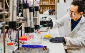 Недавно найденные бактерии борются с изменением климата