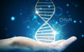 В университете ИТМО предложили новую концепцию средства борьбы с онкозаболеваниями