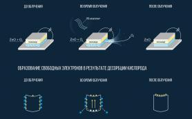 Ультрафиолет улучшает «зрение» фотодетекторов, выяснили в МФТИ