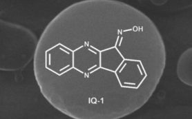 В ТПУ разработали частицы для доставки в организм противовоспалительных ингибиторов