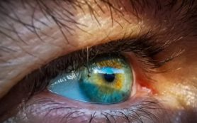 Исследователи МГППУ объяснили один из известных парадоксов зрительного восприятия
