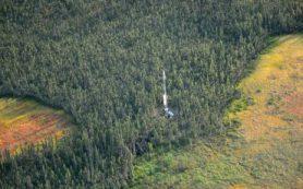 Потеря воды из северных торфяников — вероятный ускоритель изменения климата