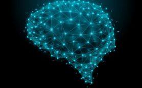 Исследование показывает, как наш мозг остается активным во время знакомых, повторяющихся задач