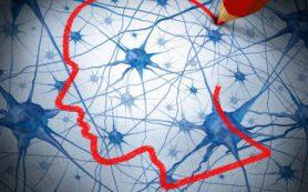 Нервные клетки людей с аутизмом различаются до рождения