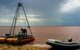 Исследователи ИАЭТ СО РАН при участии коллег из-за рубежа выяснили, когда на Алтае исчез лес